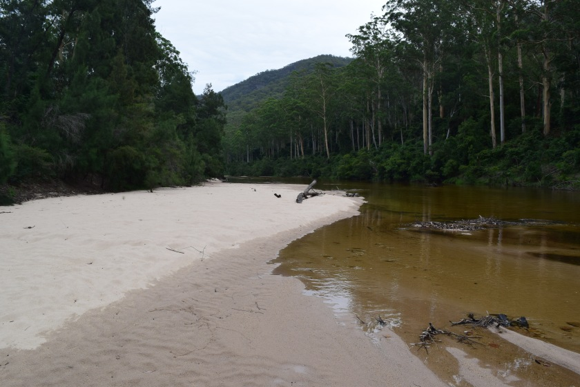 Sandy Beach just upstream from the Colo